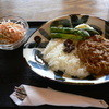 グースベリー - 料理写真:パキスタン風チキンカレー(800円)