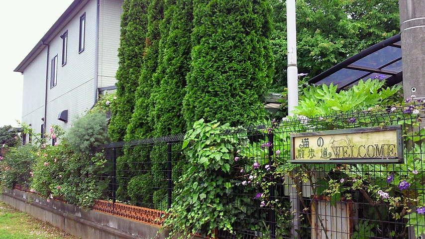 オープンガーデンカフェ 猫の散歩道