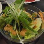 エスリル - キーマカレーについてるサラダ