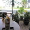サウンドスウェルカフェ - ドリンク写真: