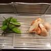 かさね - 料理写真:アオリイカ・白子・枝豆