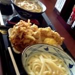 13869055 - 釜揚げ&かけうどん+天ぷら数点