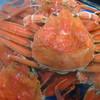 さつま珍味 隆盛 - 料理写真:コウバコ(セコガニ) 北海道マツバガニのメス