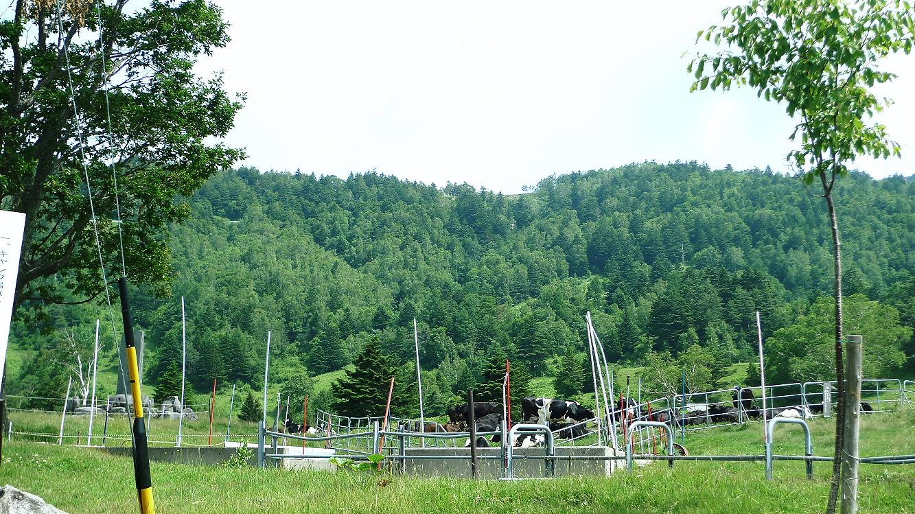 山田牧場 見晴茶屋