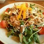 ログストック - レディースランチの冷しゃぶサラダ
