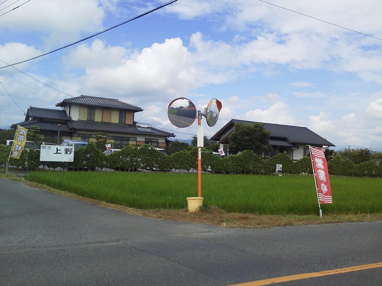 喫茶 上野