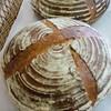 ソフィー - 料理写真:ミッシュブロート サワー種で、ライ麦粉50%配合。リピーターが増えています!