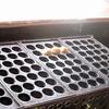 てっぱん堂 - 料理写真:たこ焼き少量でも注文生産