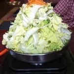14492221 - 白菜、てんこ盛り。