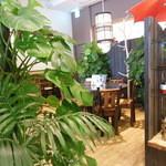 ケニーズハウスカフェ - 植物が多い店内