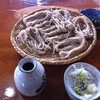 そば処 よつかど - 料理写真:大盛ざるそば