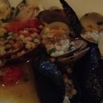 タロス - いろいろな貝のフレーグラ