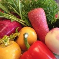 色鮮やかな旬の野菜を提供