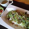 のんのん屋 - 料理写真:ベトナム料理です