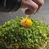鯉八 - 料理写真:お好み焼き