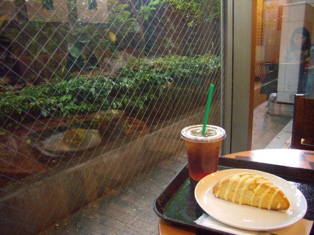スターバックス・コーヒー 谷町筋NSビル店