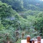 霧の森レストラン - 大きな窓から見える癒しの森