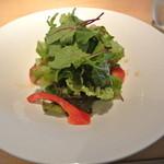 ristorante SOLARE - 野菜サラダ