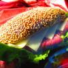 コッコパン - 料理写真:パストラミサンド