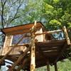 かたつむり - 料理写真:ガーデンにそびえ立つツリーハウス。地元の間伐材で作りました。