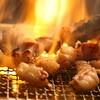 龍ノ巣 - 料理写真:コラーゲンたっぷりの旨ホルモンをぜひご堪能ください♪