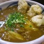風月 - 料理写真:<2013年1月>かしわ天カレー