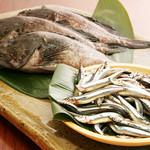 方寸MURATA - 産地直送 活き〆の天然魚を中心にご用意しております。