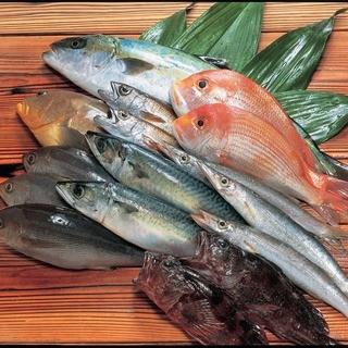 九州地魚を空輸しております。