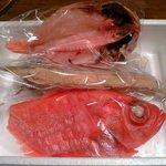 17256096 - キンメ、のど黒、アオリイカ、ぬた秋刀魚