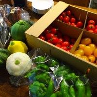 こだわりのオーガニック野菜は本当に美味しいです!