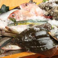 全国各地の新鮮な魚介類を多数ご用意致しております