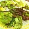 安楽亭 - 料理写真:やっぱり野菜だぞーーー!!
