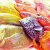 オンザビーチ - 料理写真:その日採れた新鮮な沖縄の魚介類をシェフが腕によりをかけておもてなし致します