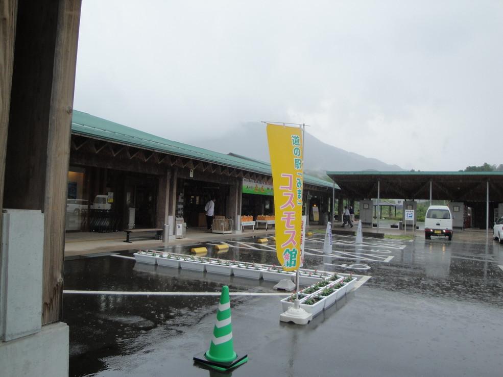 道の駅「みま」コスモス館