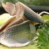 若葉鮨 - 料理写真:輝く小肌