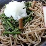 玄庵 檜原 - 山菜おろしせいろ(蕎麦アップ)