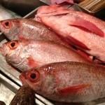 河岸 番外地 - 鮮度抜群!産地直送の新鮮な魚をいつもご用意しております