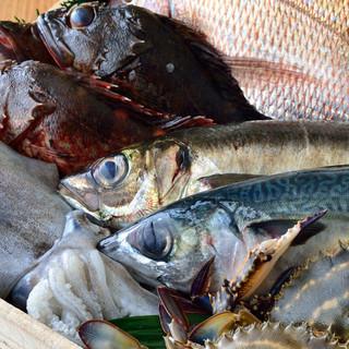 その日の旬の鮮魚にこだわります。