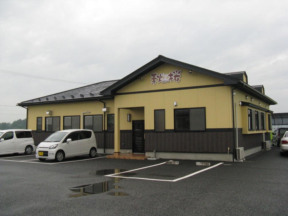 秋桜コスモス