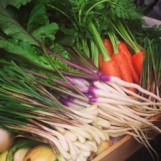 ≪旬の地野菜を美味しくお召し上がりください!!≫