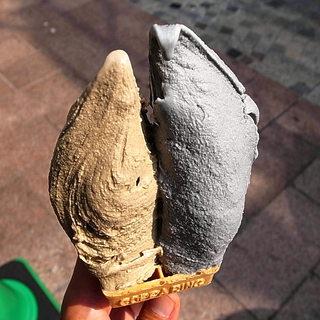 ポーラーベア - ほとんど壁土とセメント、左官屋かぁ~!!(2013年4月28日)