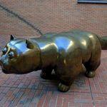 18885453 - ボテロの「猫」です、タヌキぢゃありません
