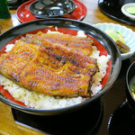 浜松 - うなぎ丼「特上」
