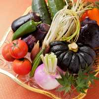 全国各地より旬の野菜を御用意しております