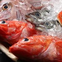 各種鮮魚をふんだんに使用したコース3種類ございます。