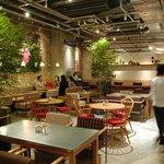 クックコープカフェ - 緑がいっぱいの店内。中庭みたいな空間でお茶なんていかがですか