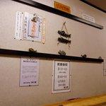 洛二神 - 店内の風景です。カウンターから正面を撮ってます。