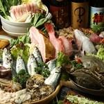 楽食堂 はいじ  - 料理写真:「楽食堂 はいじ」 が毎朝仕入れる海の幸!