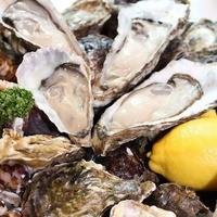 ☆ + ☆ + ☆ 生牡蛎 Raw Oyster ☆ + ☆ + ☆(税抜)