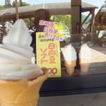 道の駅 北川はゆま - 日向夏ソフト 300円
